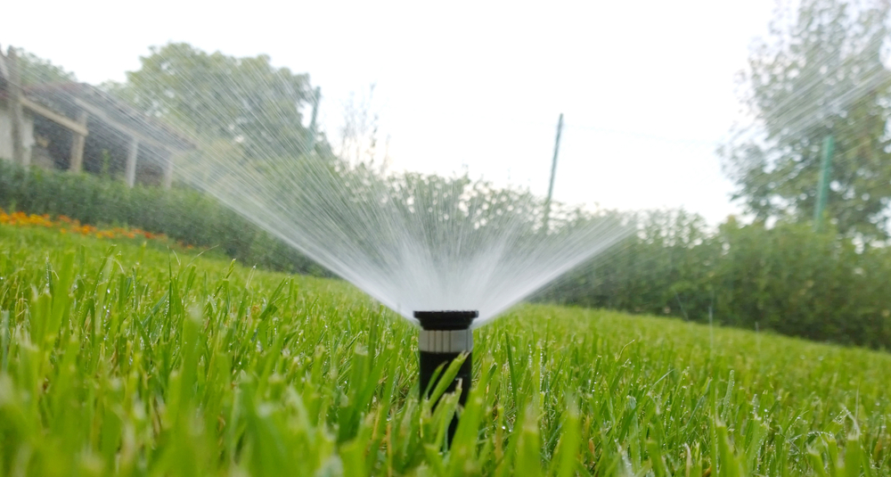 How Much Does a Lawn Sprinkler Cost