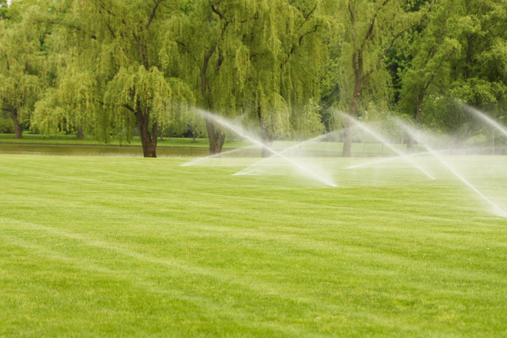 Irrigation Companies Near Me