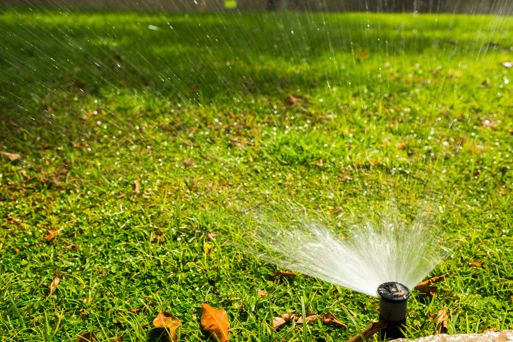 Spring Drainage Solutions