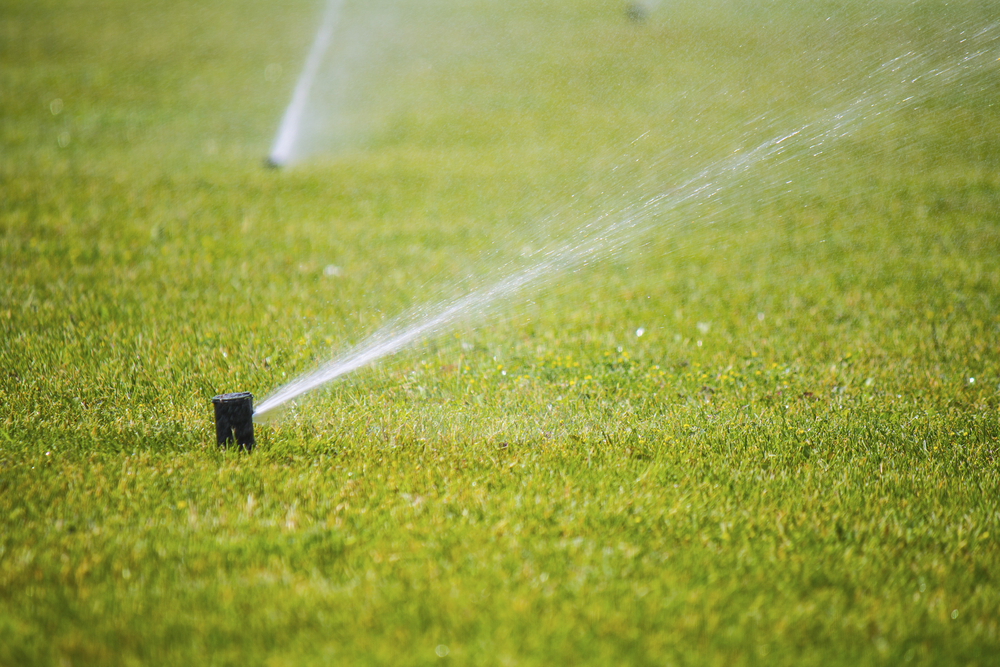 Spring Lawn Sprinkler Winterization
