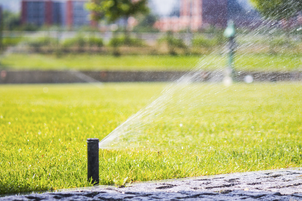 Why Irrigation is Important